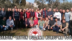 """ÜRETİCİLERDEN """"ZEYTİN BUDAMA KURSU'NA YOĞUN İLGİ!"""