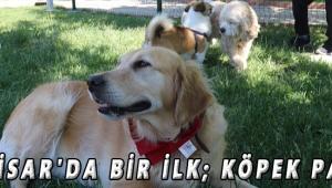 Akhisar'da bir ilk; Köpek Parkı
