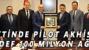 Zeytinde pilot Akhisar Hedef 100 milyon ağaç