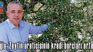 Bakırlıoğlu; Zeytin üreticisinin kredi borçları ertelensin!