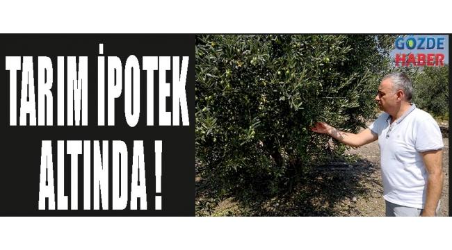 TARIM İPOTEK ALTINDA !