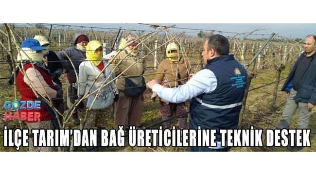 İLÇE TARIM'DAN BAĞ ÜRETİCİLERİNE TEKNİK DESTEK
