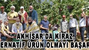 Akhisar'da Kiraz, Alternatif Ürün Olmayı Başarıyor!