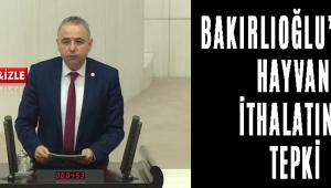 BAKIRLIOĞLU'NDAN HAYVAN İTHALATINA TEPKİ!