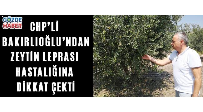 CHP'Lİ BAKIRLIOĞLU'ndan ZEYTİN LEPRASI HASTALIĞINA DİKKAT ÇEKTİ!