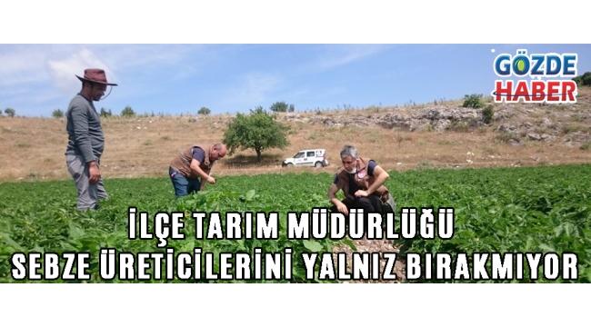 İlçe Tarım Müdürlüğü Sebze Üreticilerini Yalnız Bırakmıyor!