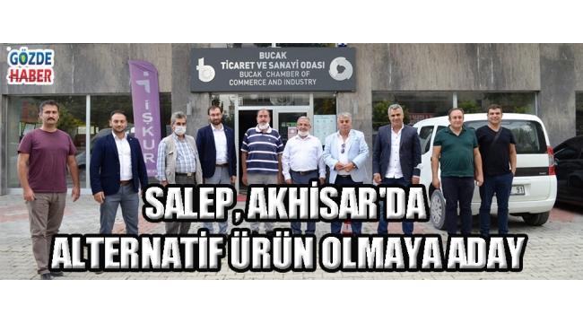 Salep, Akhisar'da Alternatif Ürün Olmaya Aday!