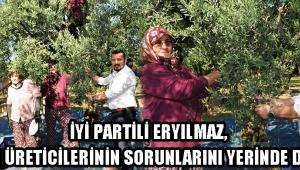 İYİ Partili Eryılmaz, Zeytin Üreticilerinin Sorunlarını Yerinde Dinledi