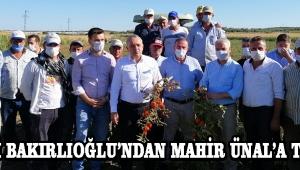 CHP'li Bakırlıoğlu'ndan Mahir Ünal'a Tepki !