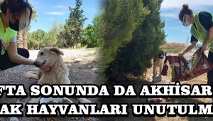 Hafta Sonunda da Akhisar'da Sokak Hayvanları Unutulmadı !