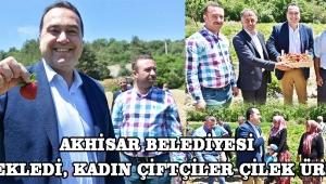 Akhisar Belediyesi destekledi, kadın çiftçiler çilek üretti !