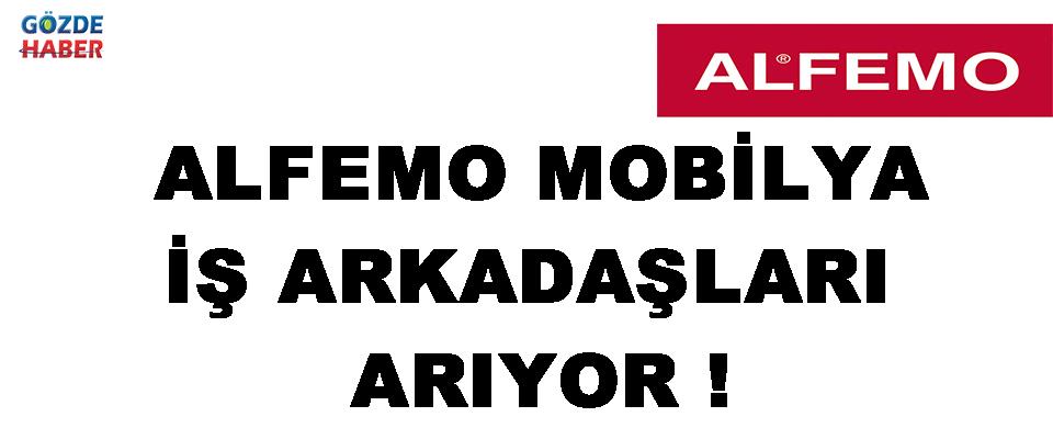 Alfemo Mobilya İş Arkadaşları Arıyor !