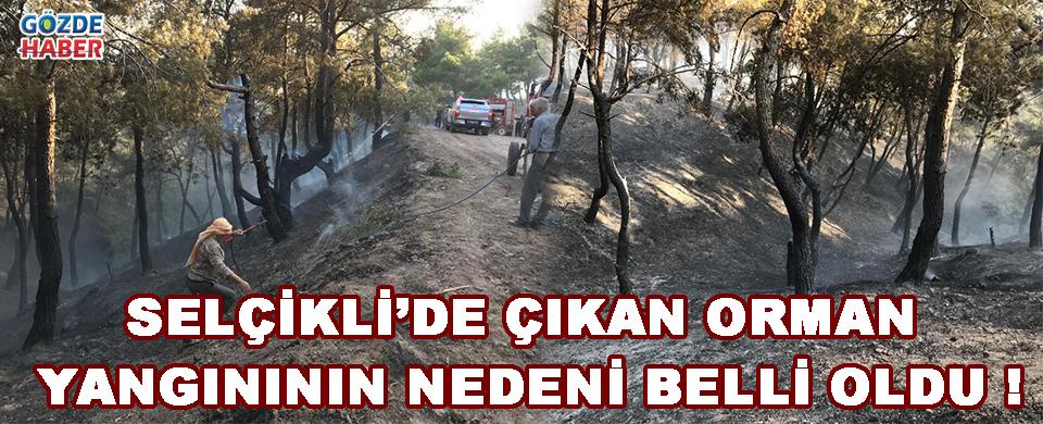 Selçikli'de Çıkan Orman Yangınının Nedeni Belli Oldu !