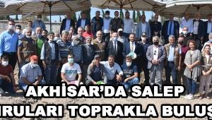 Akhisar'da Salep Yumruları Toprakla Buluştu !