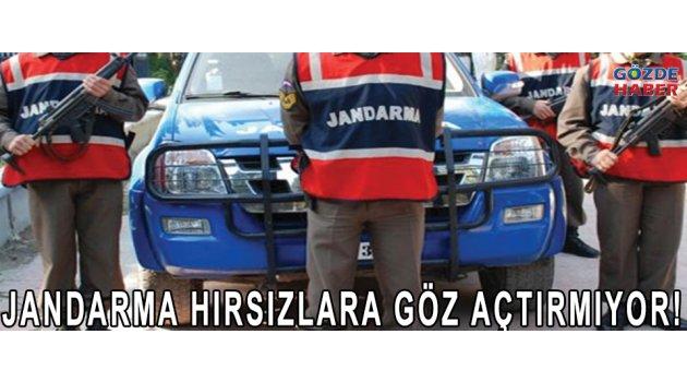 JANDARMA HIRSIZLARA GÖZ AÇTIRMIYOR!