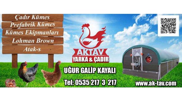 Aktav Yarka & Çadır