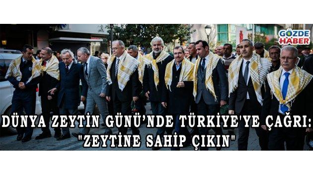 """Dünya Zeytin Günü'nde Türkiye'ye çağrı: """"Zeytine sahip çıkın"""""""