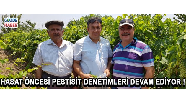 HASAT ÖNCESİ PESTİSİT DENETİMLERİ DEVAM EDİYOR !