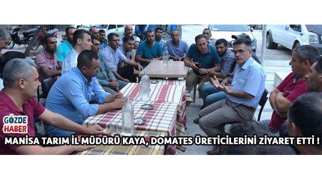 Manisa Tarım İl Müdürü Kaya, Domates Üreticilerini Ziyaret Etti