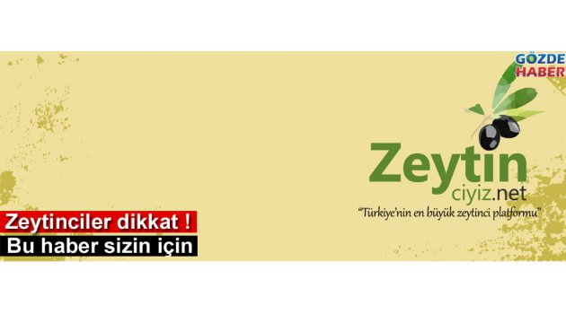 Türkiye'nin en büyük zeytinci internet sitesi hizmete açıldı