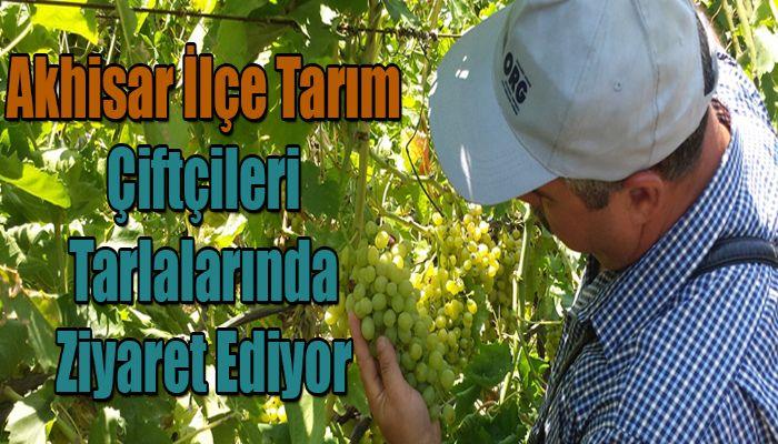 Akhisar İlçe Tarım, Çiftçileri Tarlalarında Ziyaret Ediyor