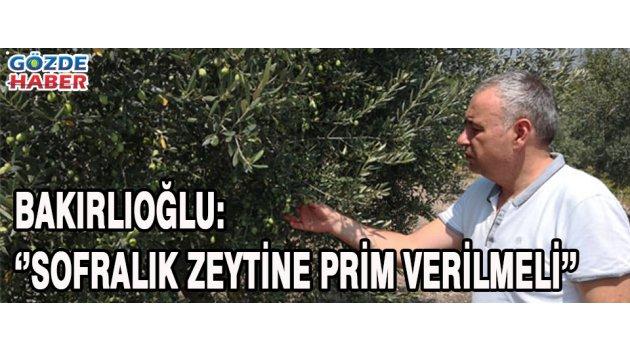 SOFRALIK ZEYTİNE PRİM VERİLMELİ !