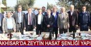 Akhisar'da Zeytin Hasat Şenliği Yapıldı !