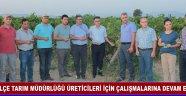 İlçe Tarım Müdürlüğü Üreticileri İçin Çalışmalarına Devam Ediyor
