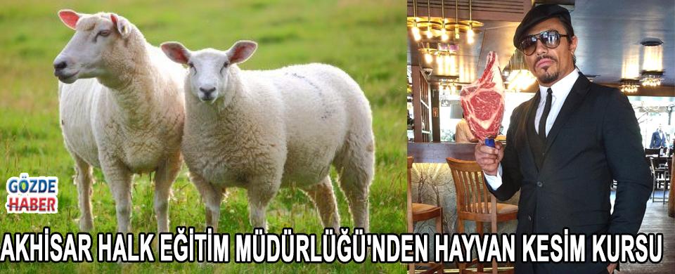 Akhisar Halk Eğitim Müdürlüğü'nden Hayvan Kesim Kursu !